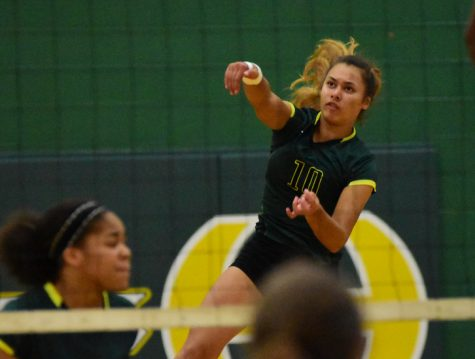 Lady Burros Volleyball earns win in first district match of 2017 season