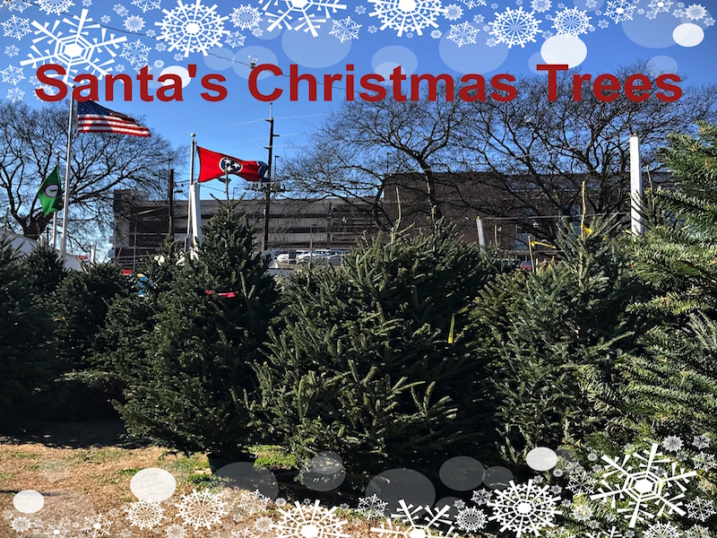 Nashville Traditions: Santa's Trees Lot, since 1970, has been a Christmas tradition for generations