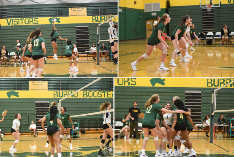 Hillsboro's Lady Burros Volleyball team completes season with big win to celebrate senior night