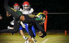 Hillsboro Burros win first round of playoffs, 48-7 against the Lincoln County Falcons
