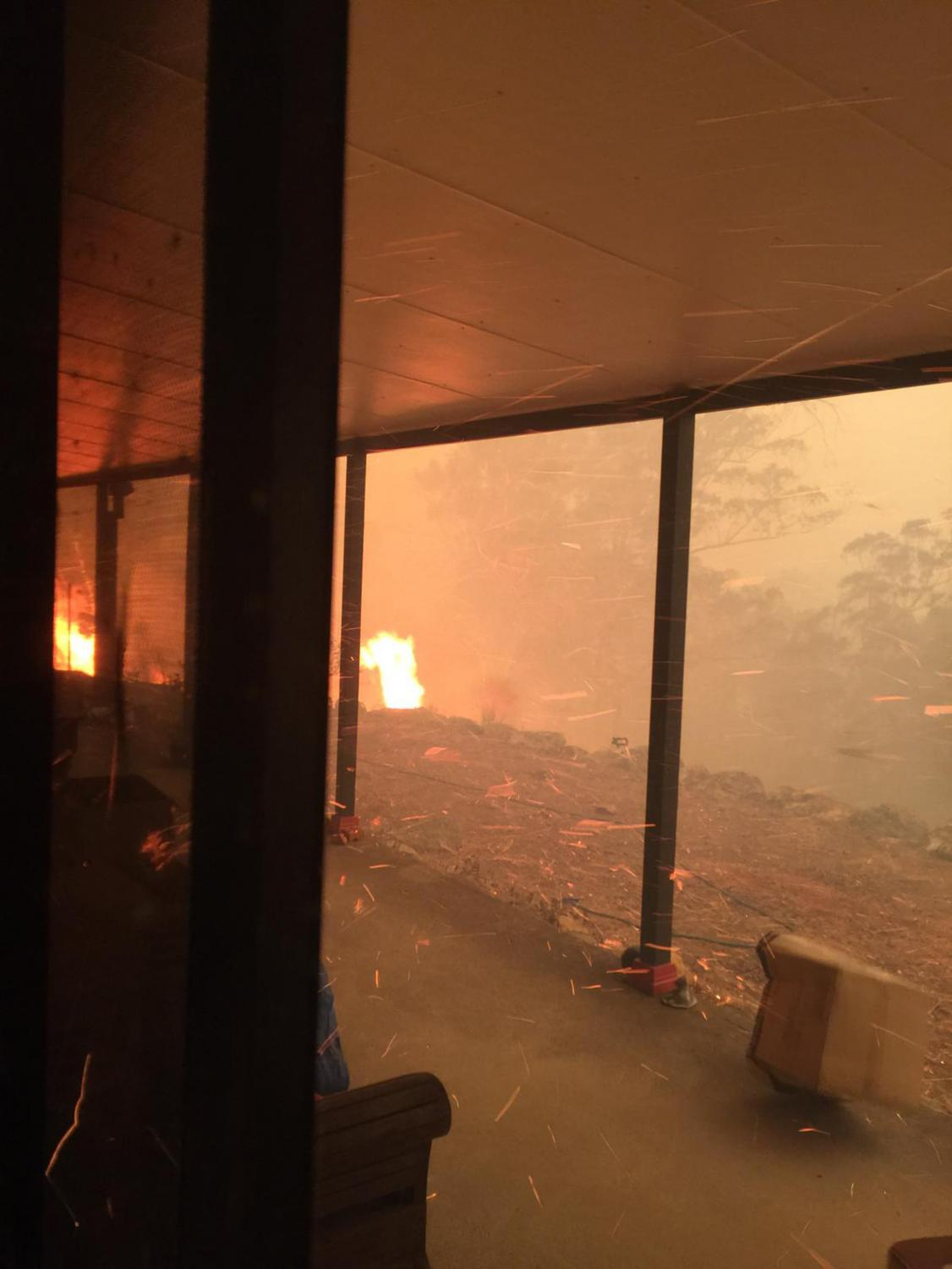 Australia+Wildfires+Survival%0AImage+ID+%3A+20007414138561%0AIn+this+Dec.+21%2C+2019%2C+photo+provided+by+Helena+Wong%2C+fire+approaches+her+home+as+she+shelters+inside.+Wong+and+her+partner+Justin+Kam+built+their+home+with+quarter-inch+thick+reinforced+glass%2C+steel+framing+and+rock+surrounds+to+protect+them+from+Australia%27s+notorious+wildfires.+But+as+they+stayed+home+with+their+son+and+battled+flames+that+soared+as+high+as+a+15-story+building%2C+they+realized+they+were+in+mortal+danger.+%28Helena+Wong+via+AP%29