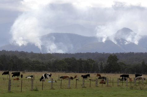 Australia's wildfires continue to be as destructive as they were in December.